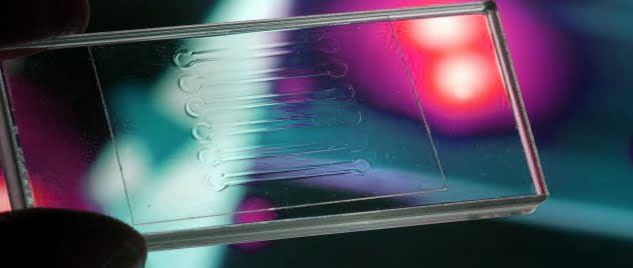 https://syntecoptics.com/wp-content/uploads/2015/06/Microfluidic-component-1.jpg