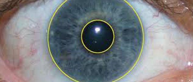 Polymer Optics Iris Recognition