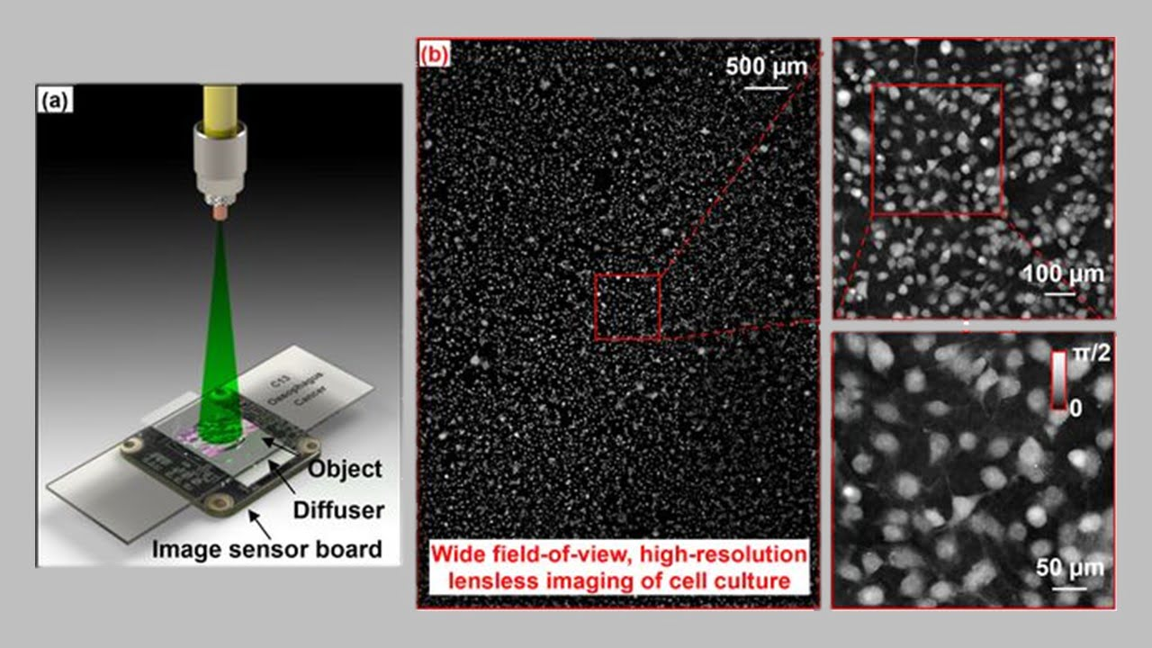 Ptychography Enables Lensless On-Chip Microscopy